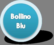 Bollino Blu Revisione Caldaia