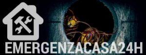 disinfestazione vespe emergenzacasa24h