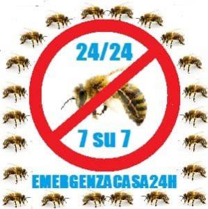 pronto intervento disinfestazione api