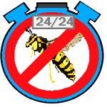 pronto intervento disinfestazione vespe 24h